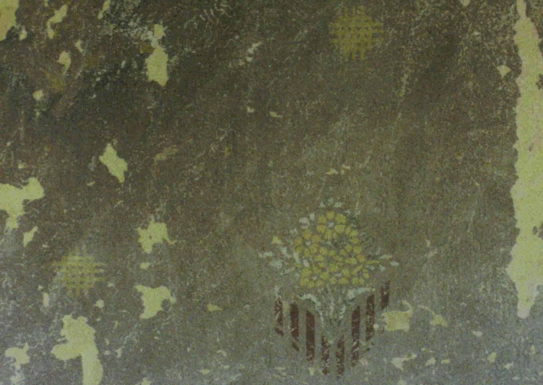 Dpreuntsfelden12a - Dunkle Flecken Unter Der Tapete