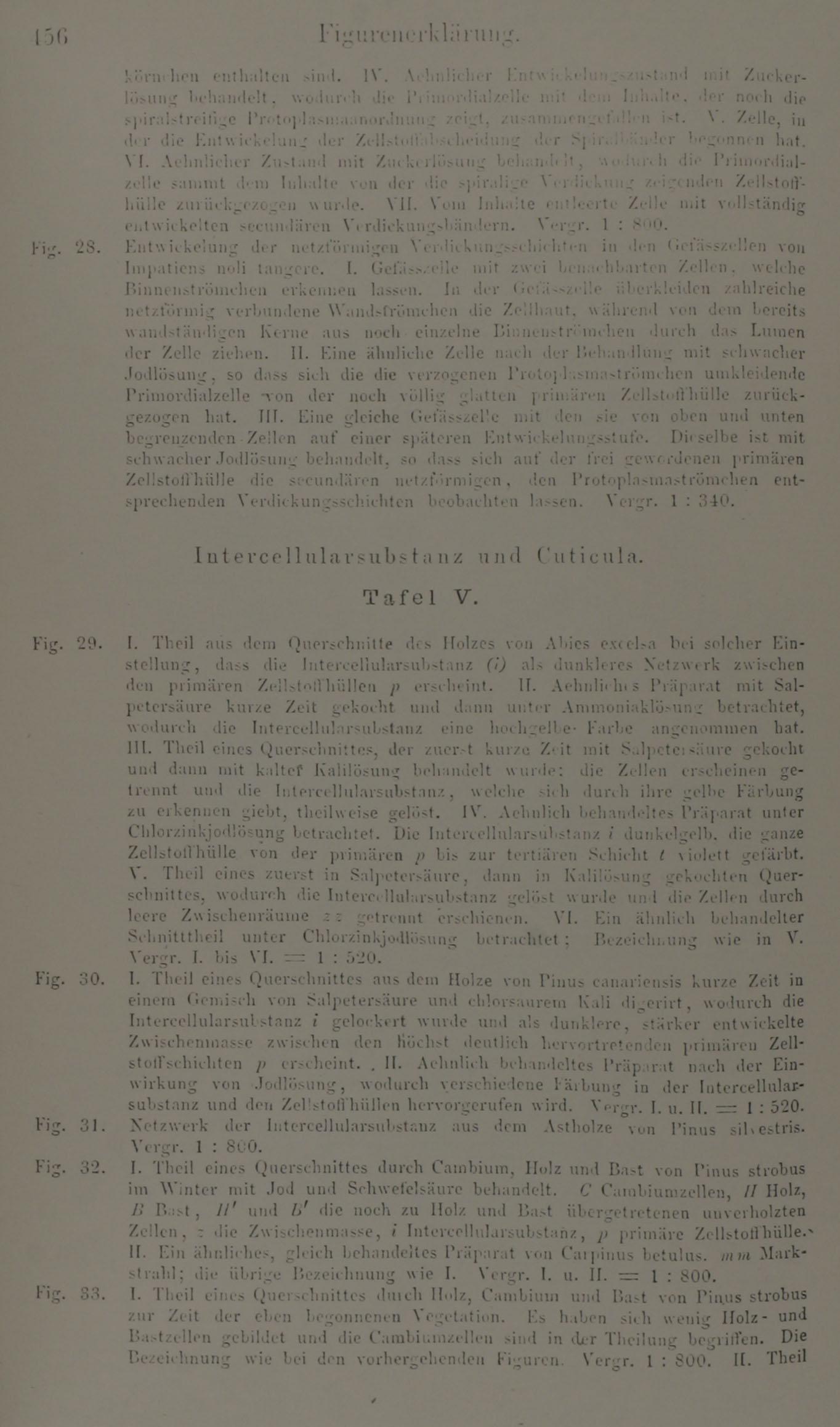 pdf Rudolf Serkin: A Life