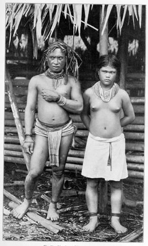 Malayische Reisebriefe von Ernst Haeckel (1901)